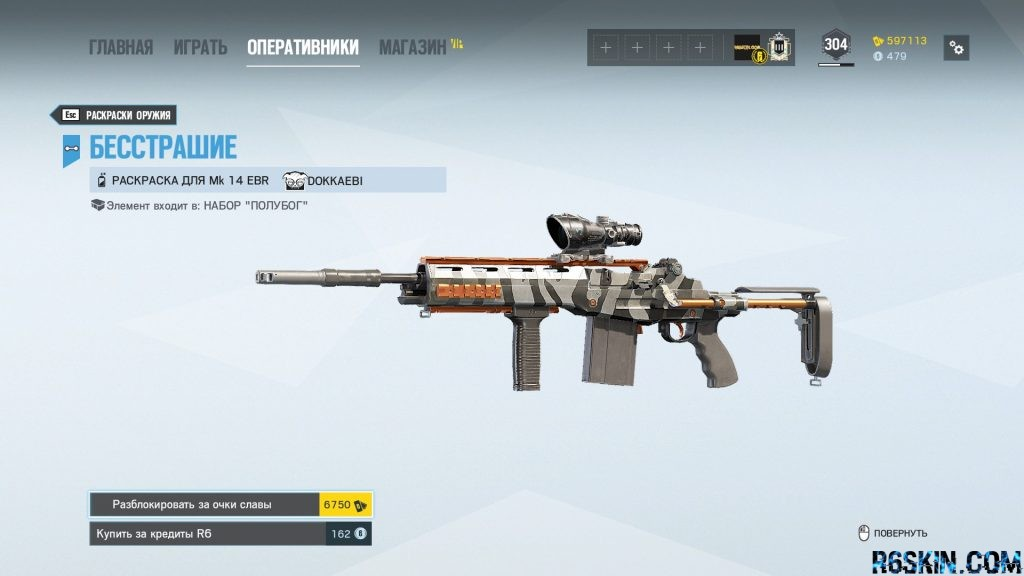 Fearless weapon skin for the  Mk 14 EBR