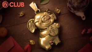 PIG'S YEAR CHALLENGE
