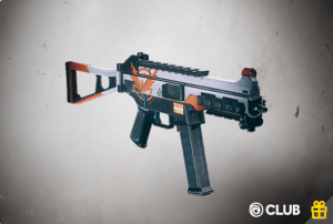 The Division® Weapon Skin