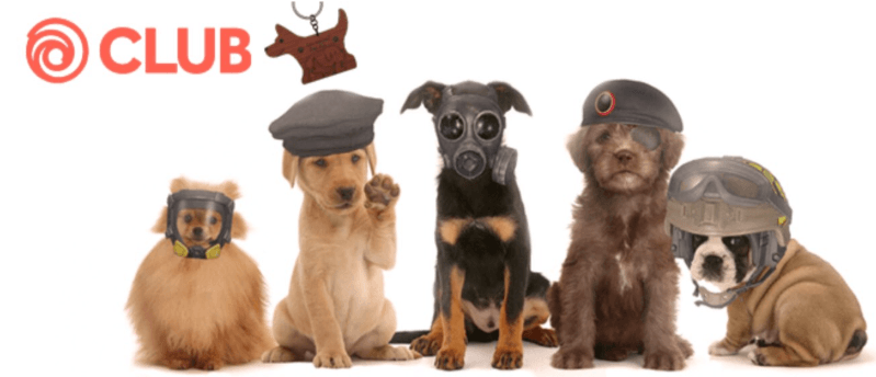 Dog Day Challenge