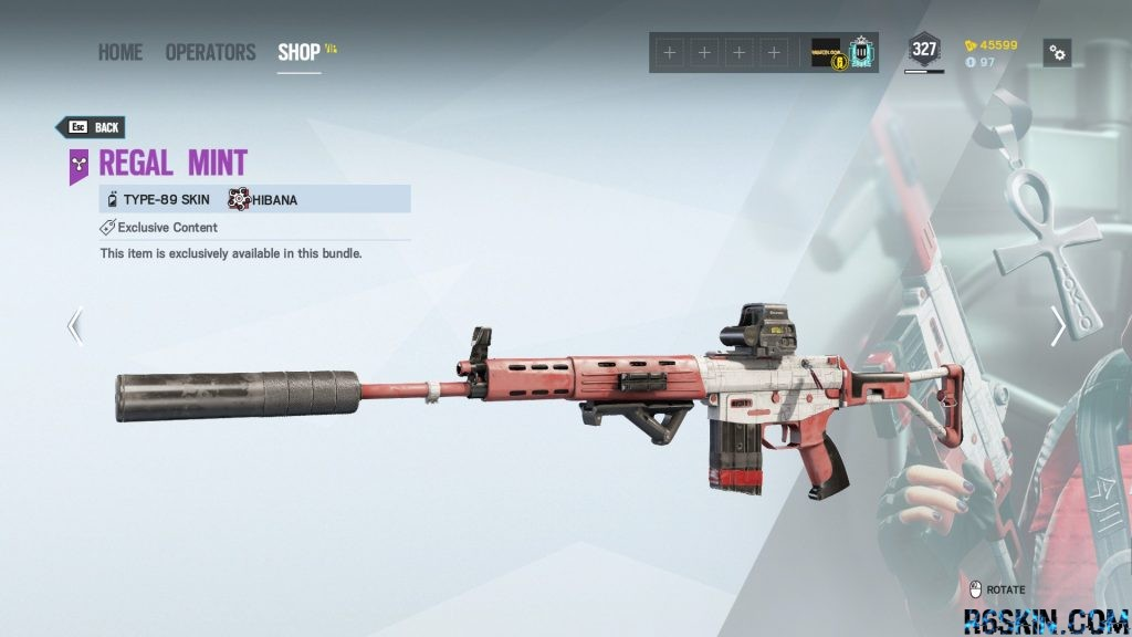 Regal Mint weapon skin for the TYPE-89