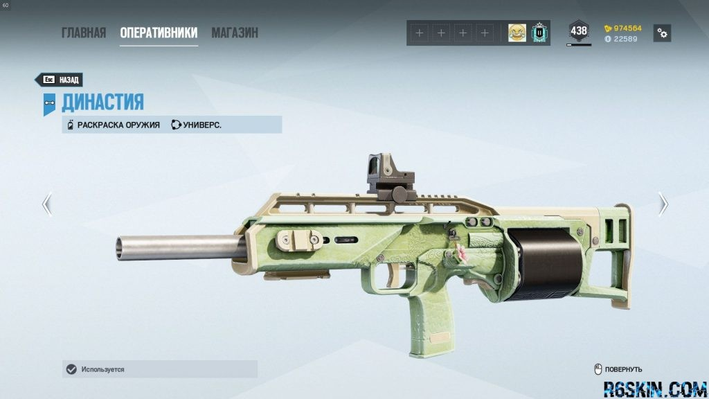 Dynasty seasonal weapon skin