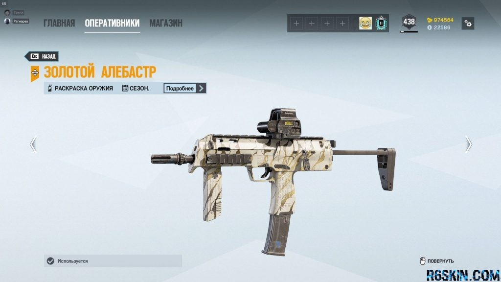 Year 5 season pass skin